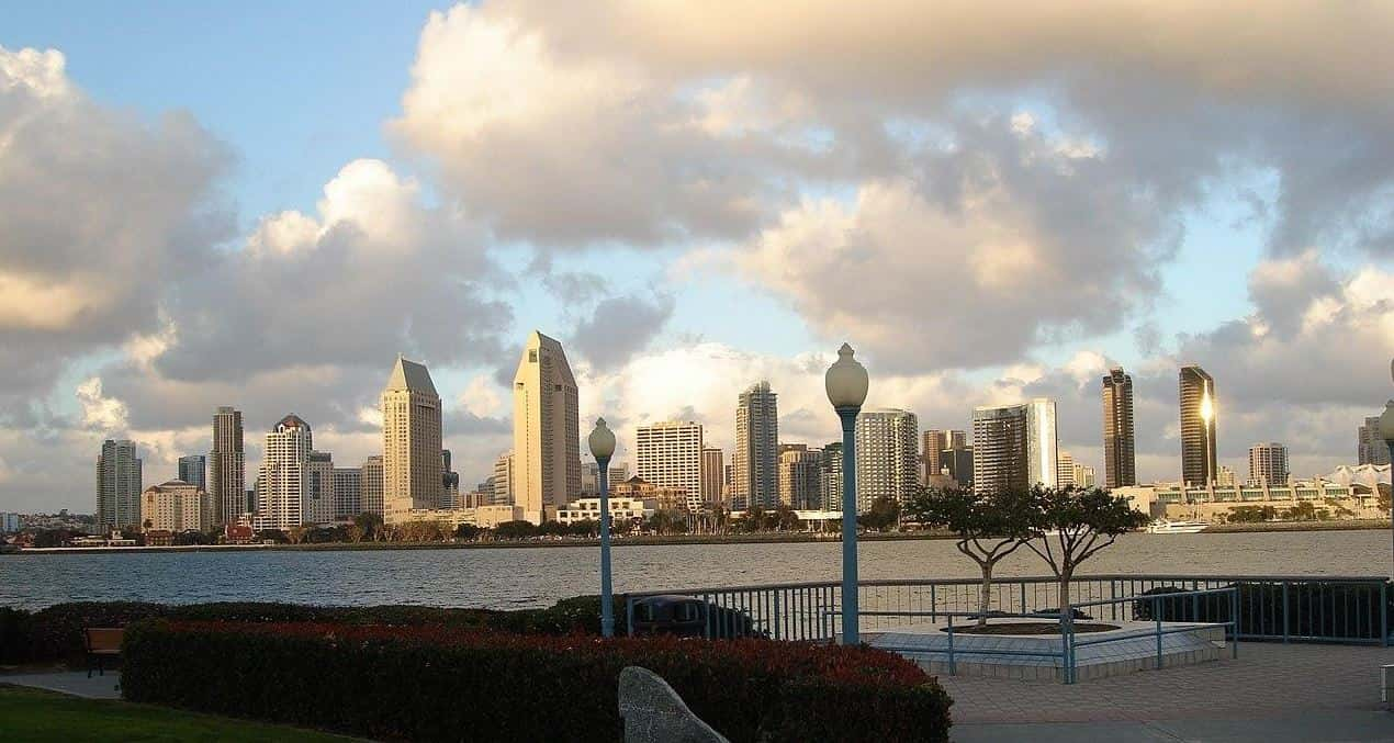San Diego city view from a park
