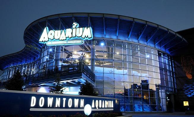 Denver the highlands denver aquarium