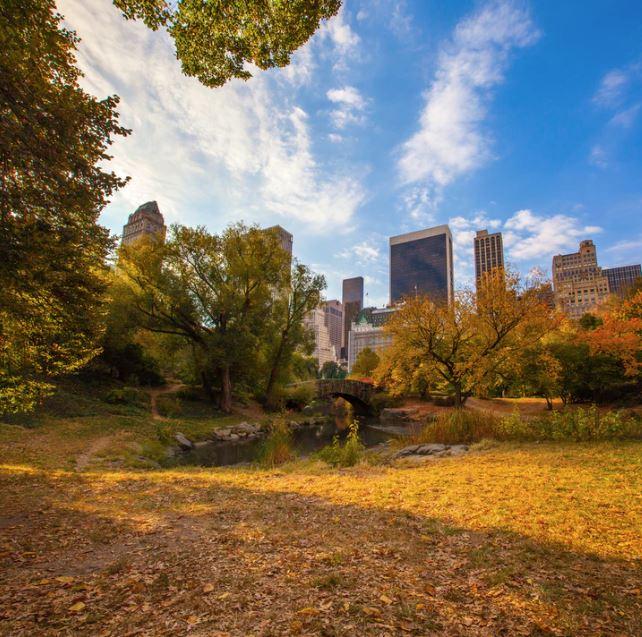 Connecticut Avenue Overlook Park (2)